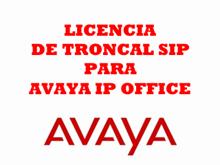 Imagen de Avaya Licencia troncal SIP para Avaya IP Office